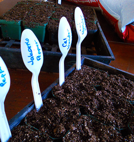 Annie-planting-seeds-2011-026-featured