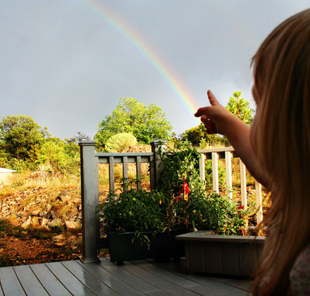 pointing-to-rainbow-promise