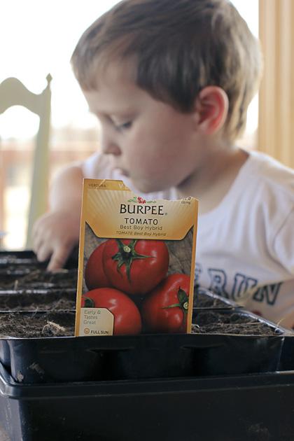 seeds 2 tomato
