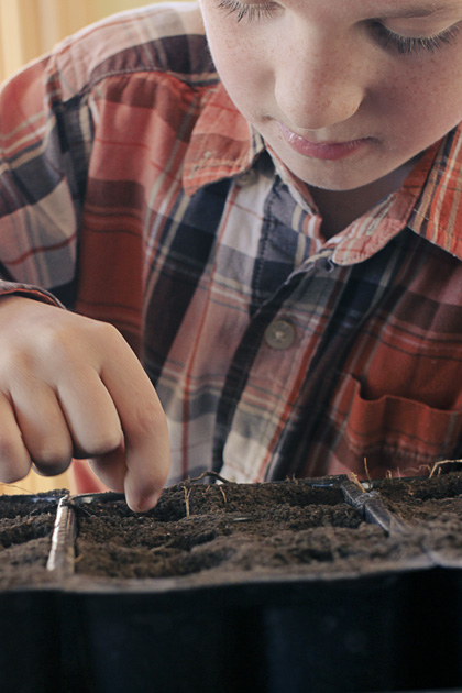 seeds 4 boy planting