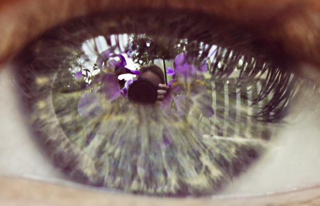 iris eye 2