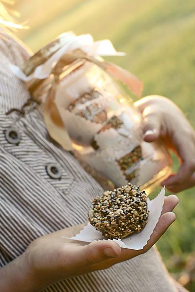 seed round granola bars