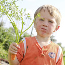 boy eating carrot 1