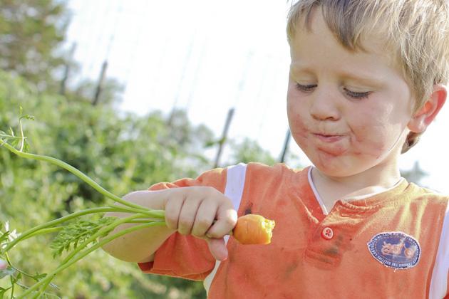 boy eating carrot 2