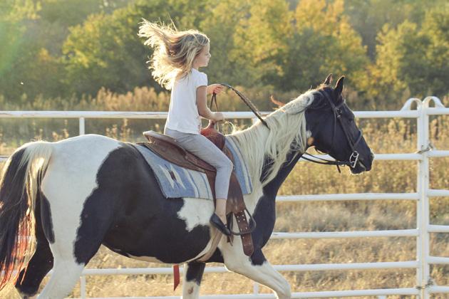 horseback lessons 10 more hair