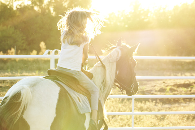 horseback lessons 12 into the sunset