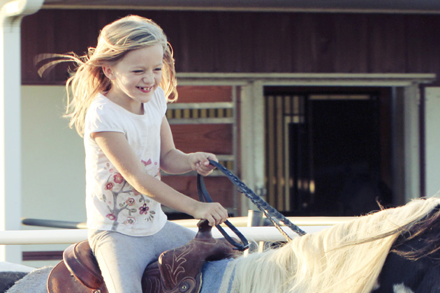 horseback lessons 3 wrinkled nose