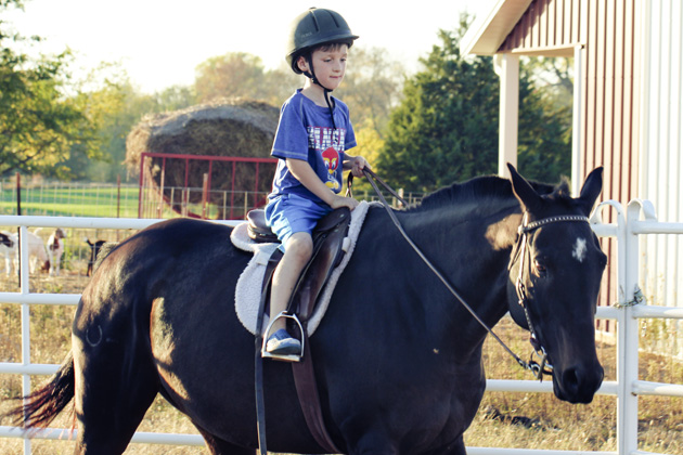 horseback lessons 4 responsible boy