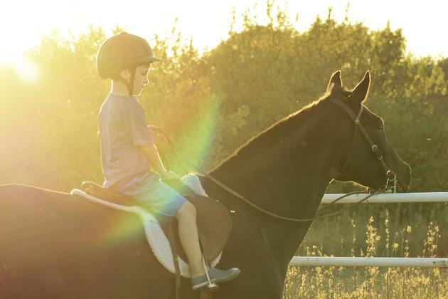 horseback lessons 6 rainbow