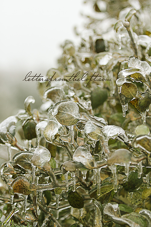ice storm 3 tinsel
